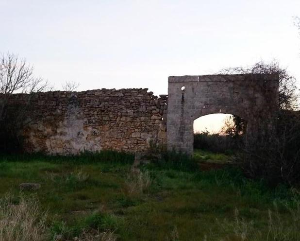PER UNA RICOSTRUZIONE DELLA STORIA DELLA MASSERIA TIMA IN AGRO DI SAVA E LUOGHI CIRCOSTANTI