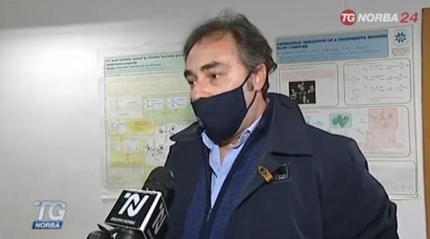 Due ricercatori maruggesi a diagnosticare in tempo la Xylella per salvare gli ulivi