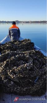 Guardia Costiera di Taranto: colpita duramente la pesca illegale