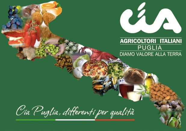 Puglia, è l'agricoltura il più grande datore di lavoro della regione. Cia Puglia: «Siamo la più grande 'industria' del Sud, con 112.890 addetti superiamo Ilva e Fiat»
