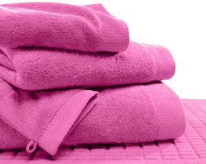 Toilettes serviette