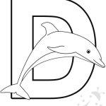 Alfabeto con disegni – Lettera D