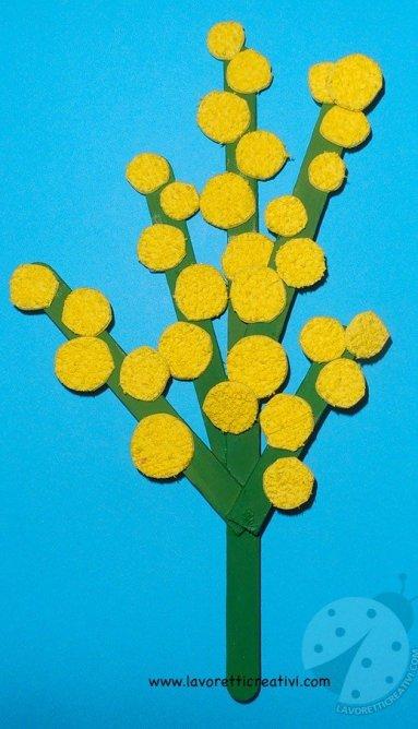 mimosa fai da te