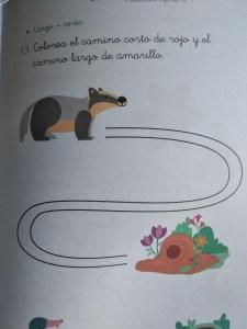 cuaderno con curva de RUBIO