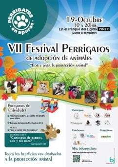 Cartel promocional VII Festival Perrigatos