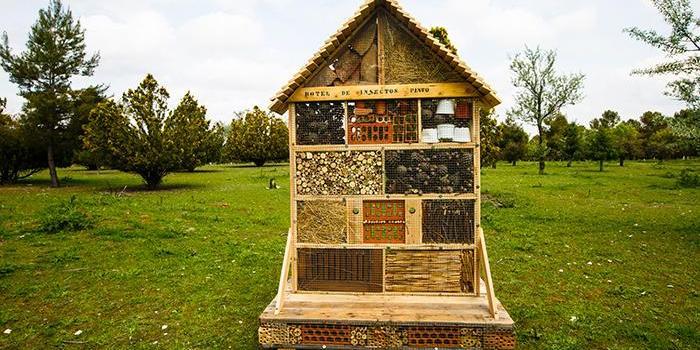 """El Ayuntamiento de Pinto ha puesto en marcha la iniciativa """"hoteles de insectos"""" para estimular el incremento de la biodiversidad."""