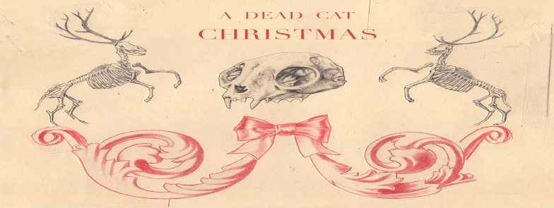 A Dead Cat Christmas at AS220