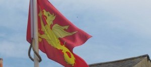 Wessex Flag, IMG_2723