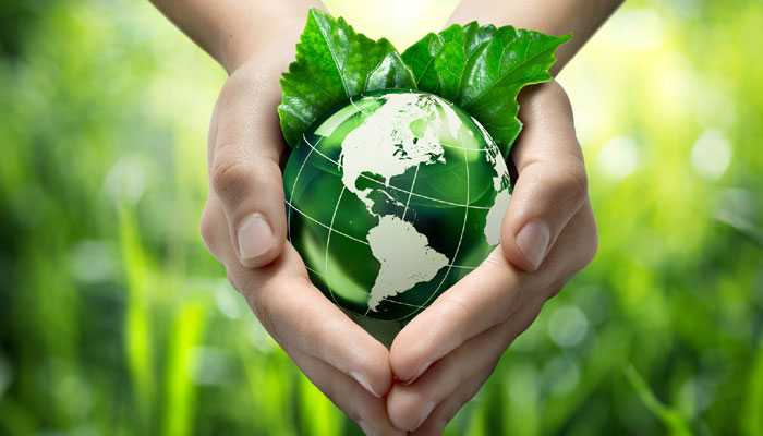 Constitutional Provisions of protection of Environment