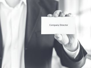 Directors of a company - Appointment, qualifications and powers