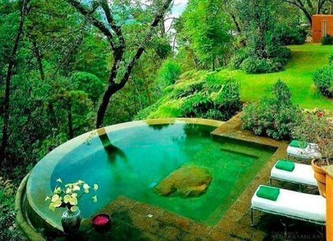 Jardinería ecológica en casa 2
