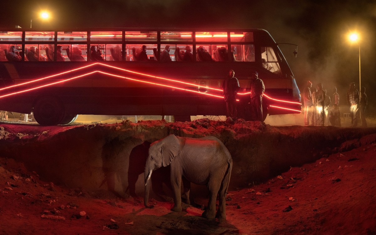 Nick Brandt, Bus Station With Elephant and Red Bus (2018), archival pigment print; Credit: Courtesy of the artist and Fahey/Klein Gallery