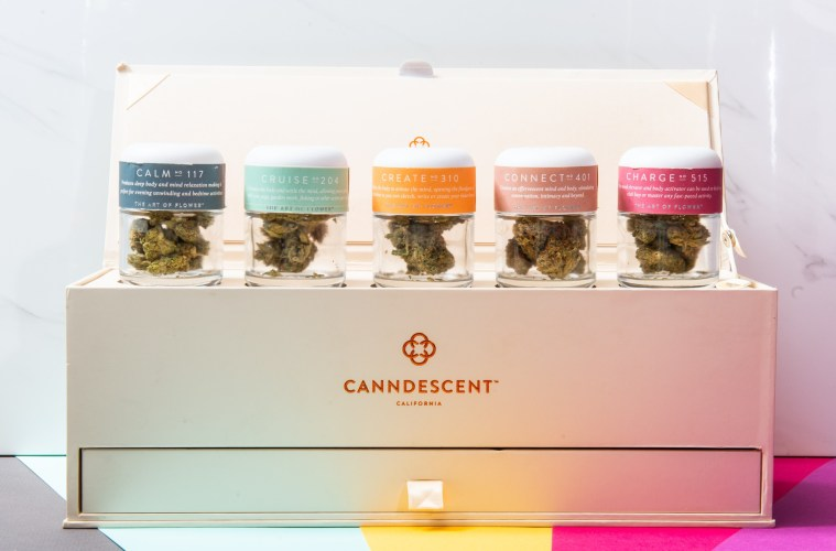 Canndescent gift box; Credit: Courtesy Canndescent