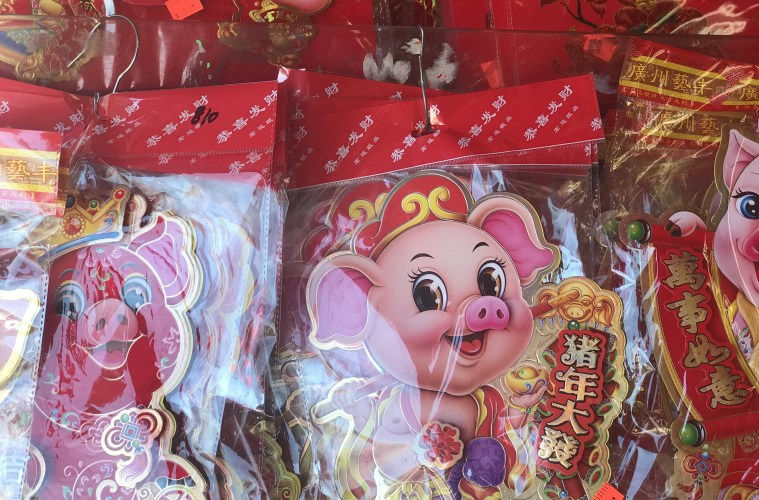 Celebrating the Year of the Pig in Chinatown; Credit: Michele Stueven