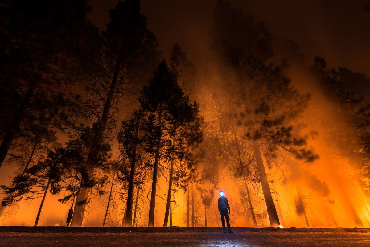 Jeff Frost, California on Fire; Credit: Courtesy of the artist