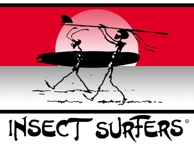 Insect Surfers, Mecolodiacs