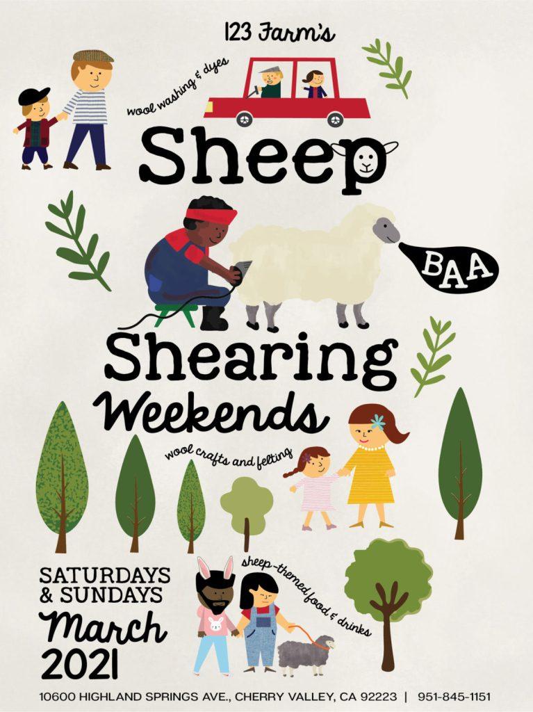 Sheep Shearing Weekends at 123 Farm