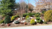 Steep Slope Erosion Control Options | Lawn-N-Order Landscaping