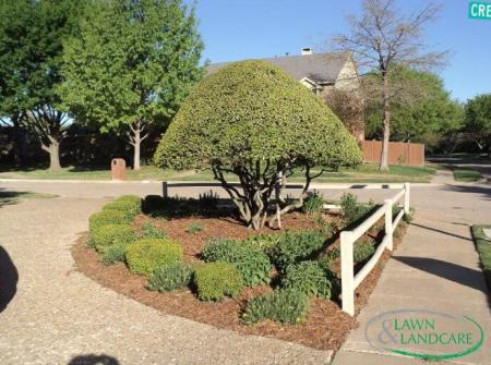 Lawn and Landscaping tree garden design