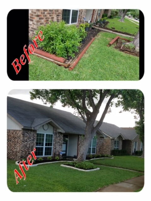 the colony tx landscaping before and after