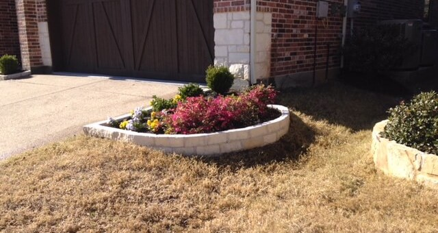 side-gardens for driveways in water-restricted areas