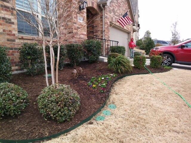 driveway garden designs texas