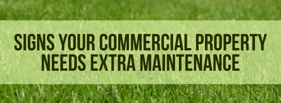 Signs Your Commercial Property Needs Extra Maintenance