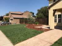 Mediterranean Front and Back Yard - Sacramento Landscape ...