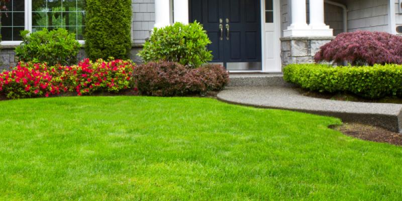 Our Services Lead To Healthy And Beautiful Lawns