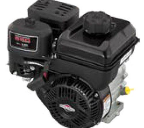 Briggs and Stratton Engine