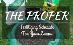 The-proper-fertilizing-schedule-for-your-lawns