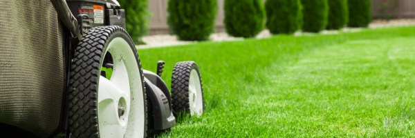lawn service care and landscaping
