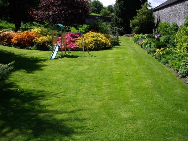 annual lawn care schedule grass