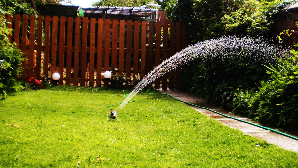 6 tips for watering