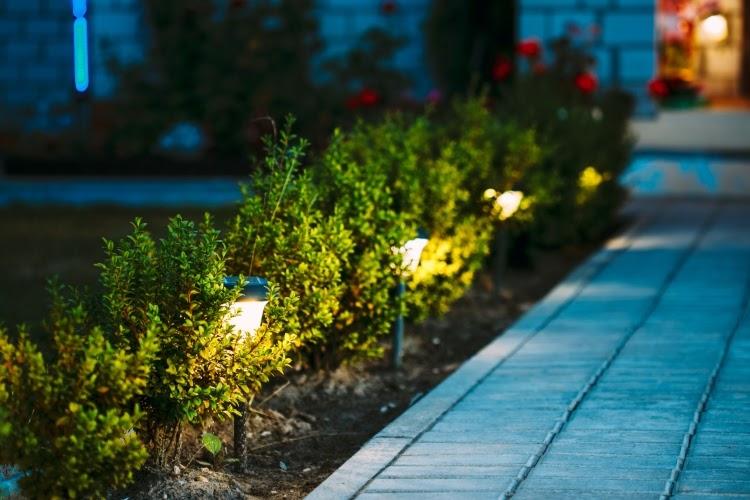 the best solar landscape lighting to