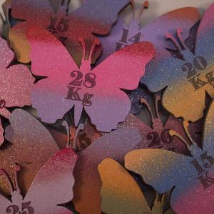 butterfly shape magnetic kg losses