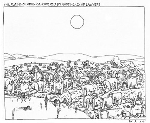 The Plains of America, Covered By Vast Herds Of Lawyers