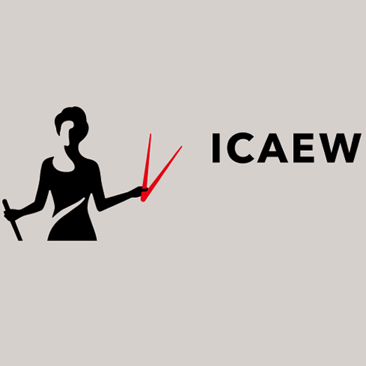 ICAEW's application to become a regulator rejected