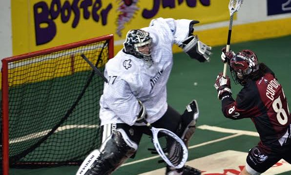 national lacrosse league NLL cupido bold rush mammoth