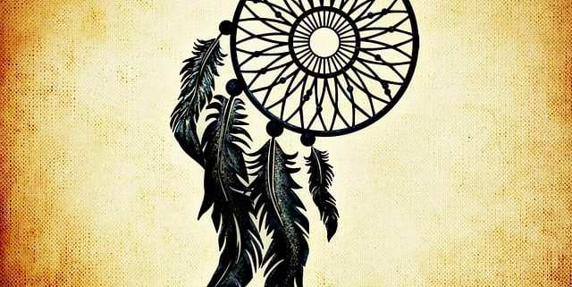 lakota campagin logo