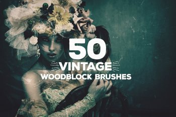 50 Vintage Woodblock Brushes by Layerform Design Co