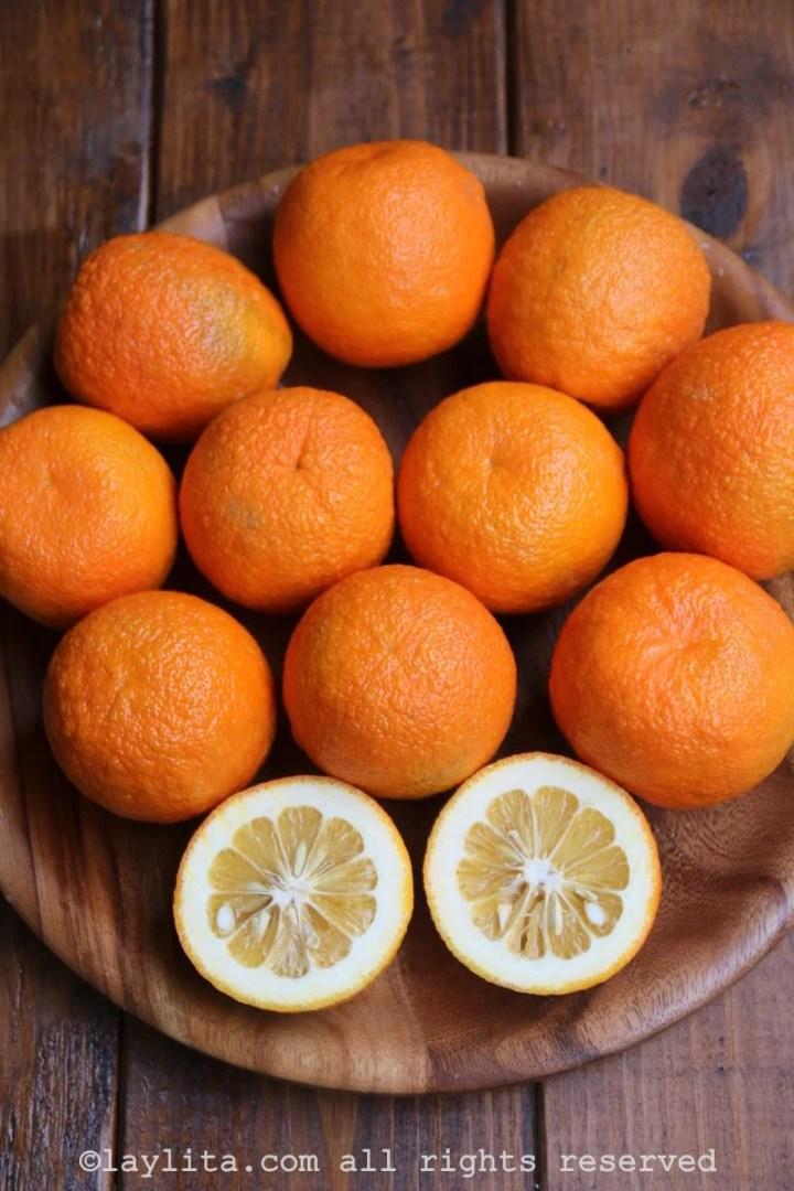 A laranja-amarga também é conhecida como laranja-da-china ou laranja de sevilla