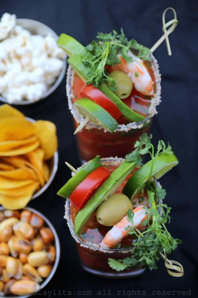 Garnished Bloody Mary or Bloody Maria cocktails
