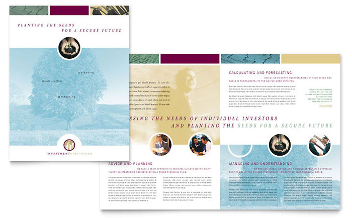 Financial Consulting Brochure Template Word & Publisher