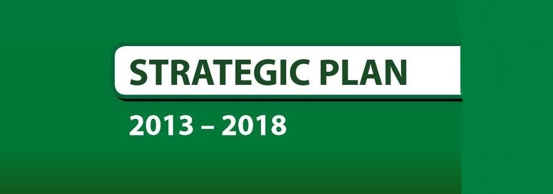 LAZ 2013-2018 Strategic Plan Launch
