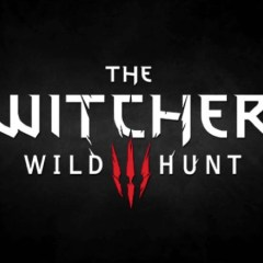 Gorgeous new Witcher 3 screens emerge
