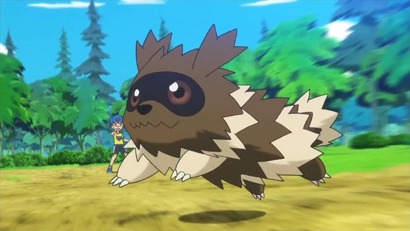 I hate you Zigzagoon, I hate you so much