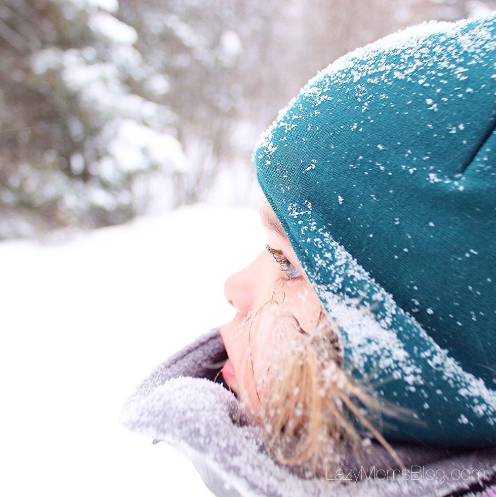 Winter nature hunt