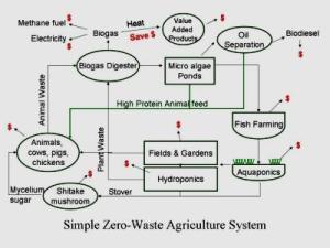 Integrated Aquaculture  IMTA » Land Based Aquaculture Assessment Framework