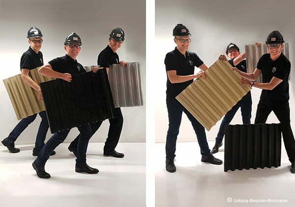 lobjoy bouvier boisseau transformation bureaux. Black Bedroom Furniture Sets. Home Design Ideas